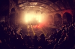 Jungle Albert Hall