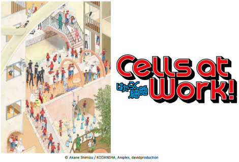 Cells at Work Anime Review